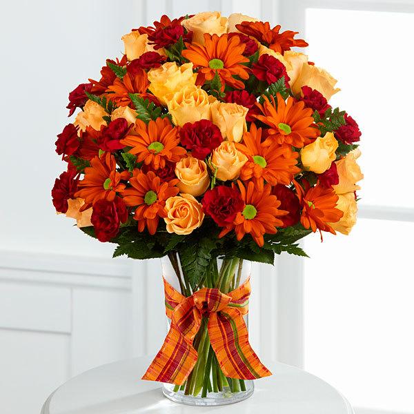 A festival of fall flower colors has arrived « veldkamp s
